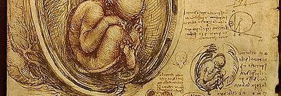 The Life and Work of Leonardo da Vinci